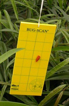 Способы борьбы с насекомыми-вредителями