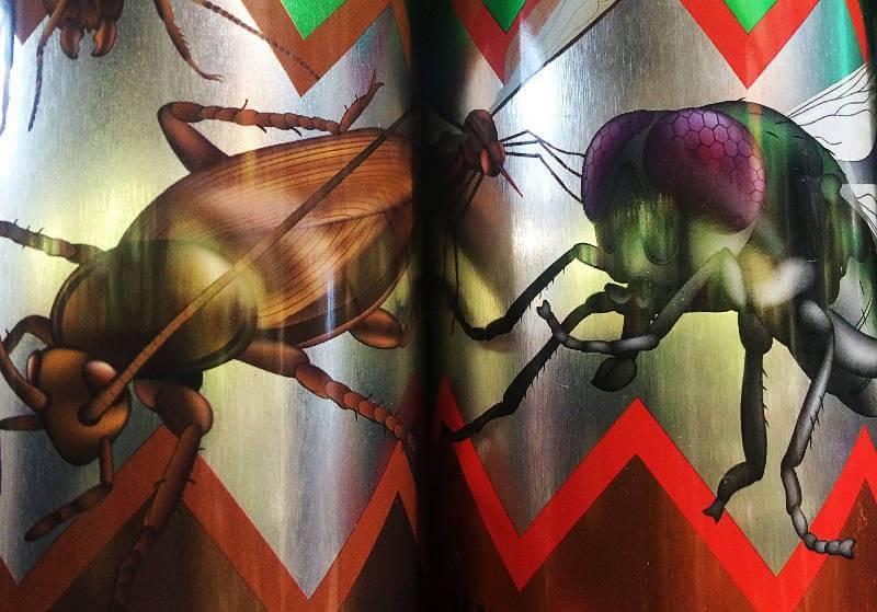 Сложности выведения тараканов — Единая Городская Дезслужба