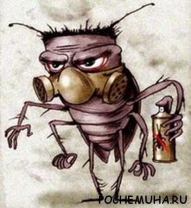 Дезинсекция или как быстро избавиться от тараканов