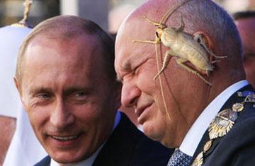 Блогеры оценили рассказ Лужкова о белых тараканах