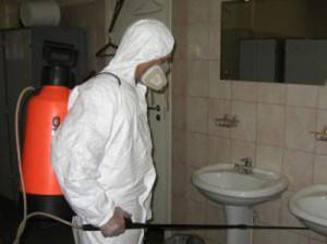 Как избавиться от тараканов в квартире советы